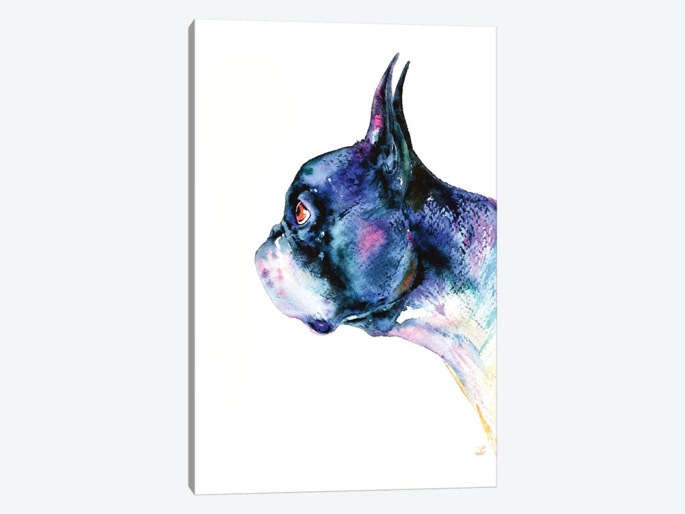 Boston Terrier by Zaira Dzhaubaeva 1-piece Canvas Wall Art