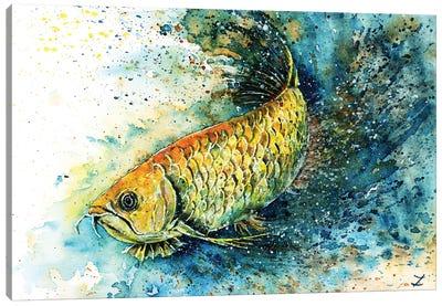 Golden Arowana Canvas Art Print
