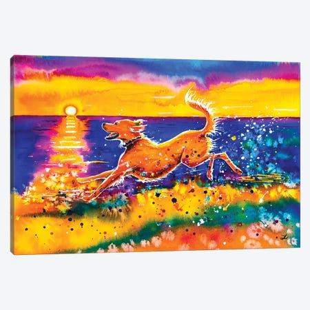 Catching The Sun Canvas Print #ZDZ27} by Zaira Dzhaubaeva Canvas Wall Art