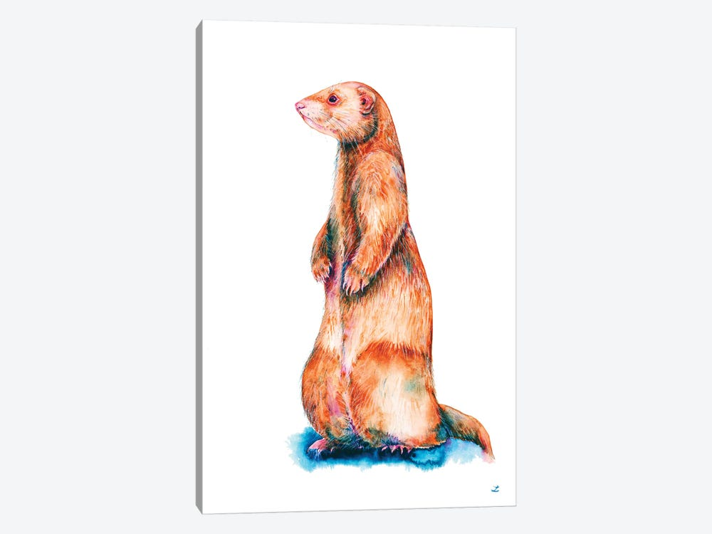 Cinnamon Ferret by Zaira Dzhaubaeva 1-piece Canvas Wall Art