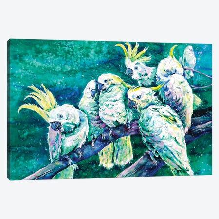 Cockatoos Canvas Print #ZDZ30} by Zaira Dzhaubaeva Canvas Art