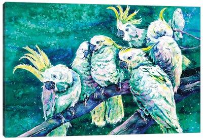 Cockatoos Canvas Art Print
