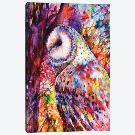 Colors Of The Wild Canvas Print #ZDZ33} by Zaira Dzhaubaeva Canvas Art