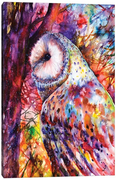 Colors Of The Wild Canvas Art Print