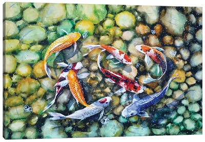 Eight Koi Fish Playing With Bubbles Canvas Art Print