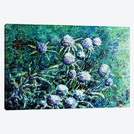 Globe Thistles Canvas Print #ZDZ49} by Zaira Dzhaubaeva Art Print