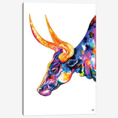 Ankole Longhorn Canvas Print #ZDZ4} by Zaira Dzhaubaeva Canvas Art