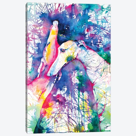 Greyhound Trance Canvas Print #ZDZ53} by Zaira Dzhaubaeva Canvas Art