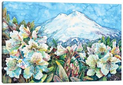 Mingi Taw Canvas Art Print