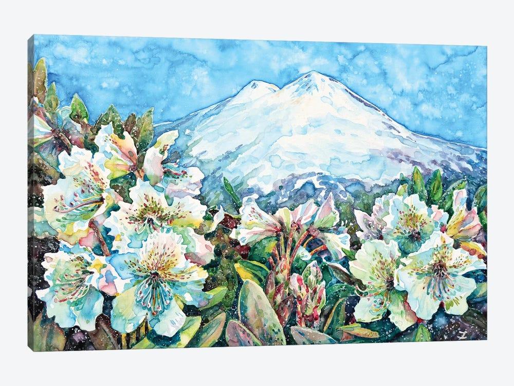 Mingi Taw by Zaira Dzhaubaeva 1-piece Canvas Wall Art
