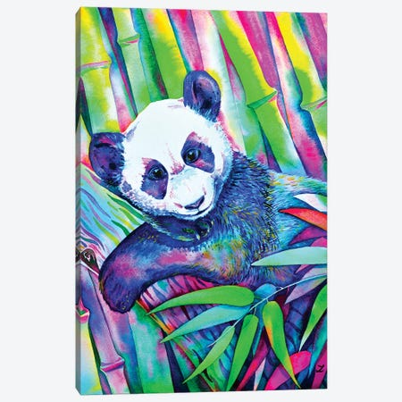 Panda Bliss Canvas Print #ZDZ82} by Zaira Dzhaubaeva Canvas Art Print
