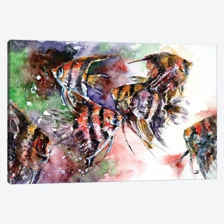 Pterophyllum Scalare (Angelfish) Canvas Print #ZDZ88} by Zaira Dzhaubaeva Canvas Art Print