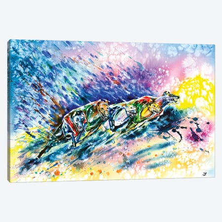 Racing Greyhounds Canvas Print #ZDZ90} by Zaira Dzhaubaeva Canvas Wall Art