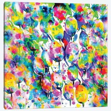 Rainbow Gooseberry Canvas Print #ZDZ93} by Zaira Dzhaubaeva Canvas Artwork