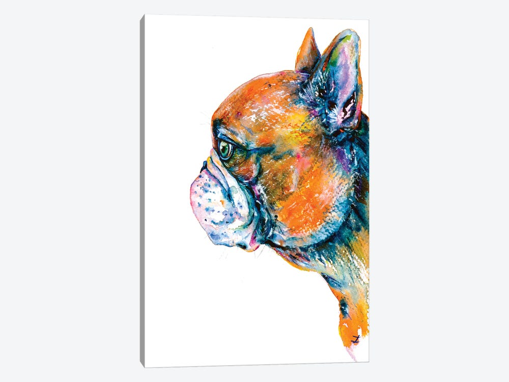Red-Fawn Frenchie by Zaira Dzhaubaeva 1-piece Canvas Print