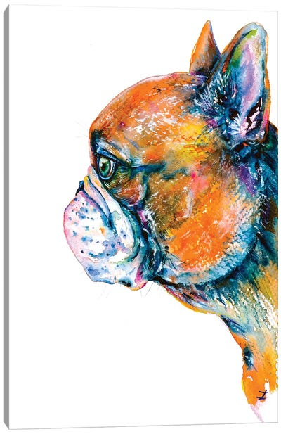 Red-Fawn Frenchie Canvas Art Print