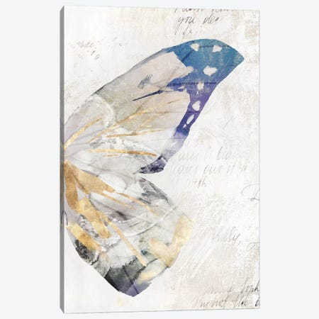 Butterfly Effect III  Canvas Print #ZEE101} by Isabelle Z Canvas Print