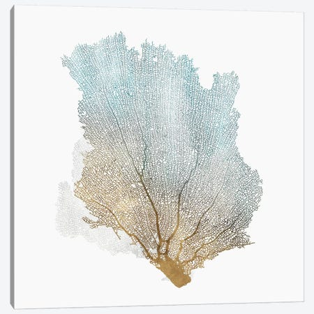Delicate Coral I  3-Piece Canvas #ZEE102} by Isabelle Z Canvas Print