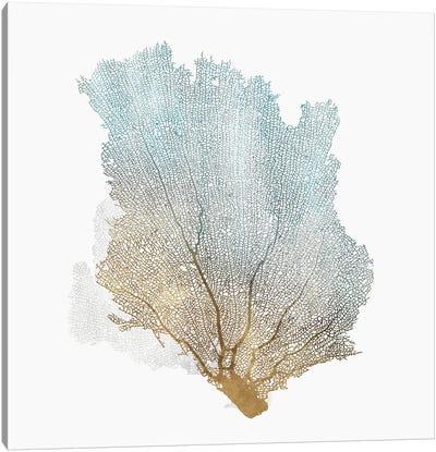 Delicate Coral I  Canvas Art Print