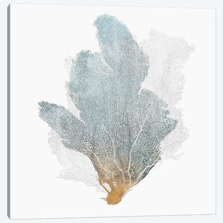 Delicate Coral II  Canvas Print #ZEE103} by Isabelle Z Art Print