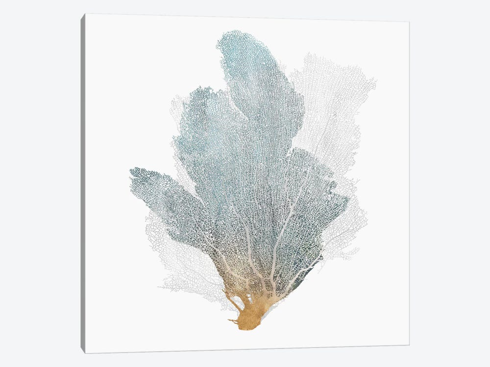 Delicate Coral II  by Isabelle Z 1-piece Canvas Art