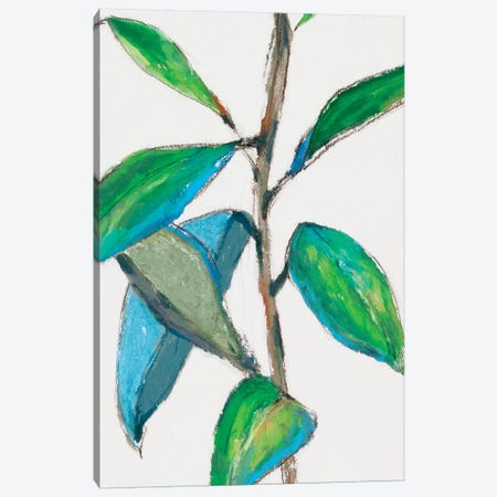 Greener Canvas Print #ZEE11} by Isabelle Z Canvas Wall Art