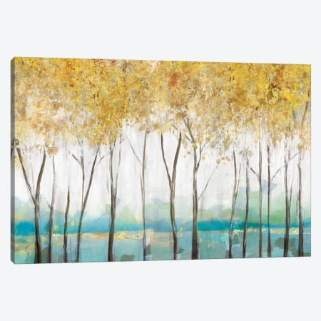 Molto Canvas Print #ZEE120} by Isabelle Z Art Print