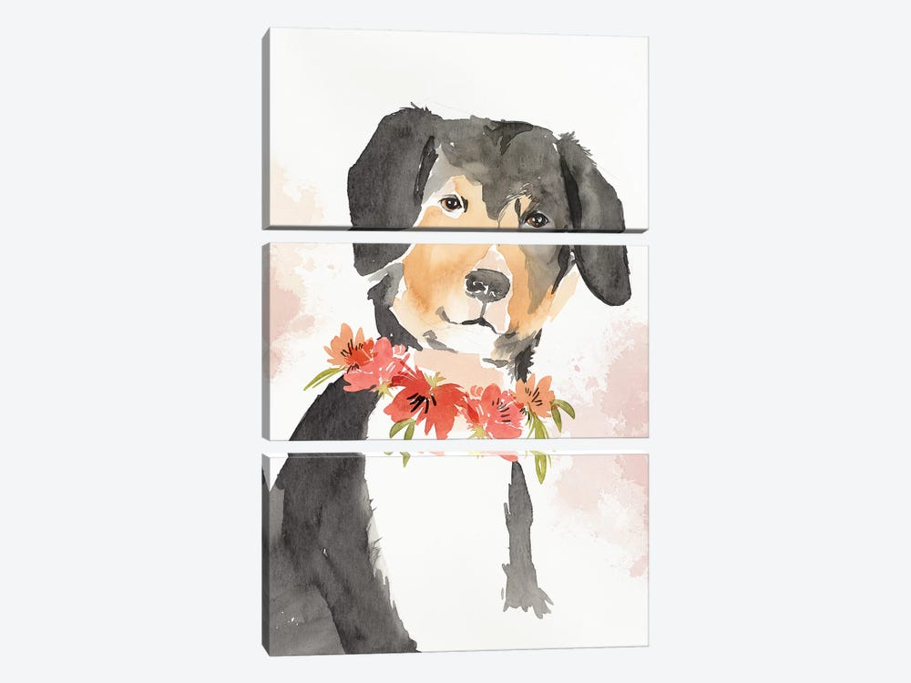 Puppy I  by Isabelle Z 3-piece Canvas Print
