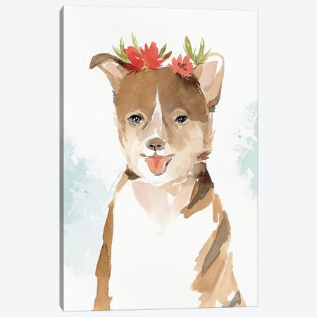 Puppy III  Canvas Print #ZEE188} by Isabelle Z Canvas Art Print