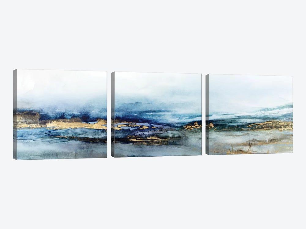 Elusive Dreams  by Isabelle Z 3-piece Canvas Artwork