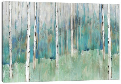 Foothills I  Canvas Art Print