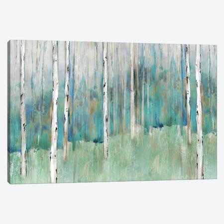 Foothills I  Canvas Print #ZEE211} by Isabelle Z Canvas Art Print