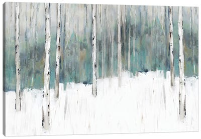 Winter's Trail I  Canvas Art Print