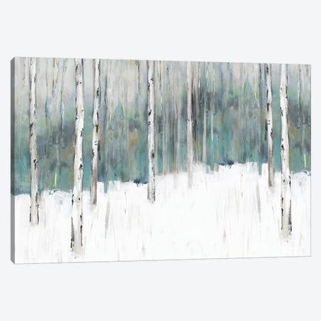 Winter's Trail I  3-Piece Canvas #ZEE219} by Isabelle Z Canvas Art Print