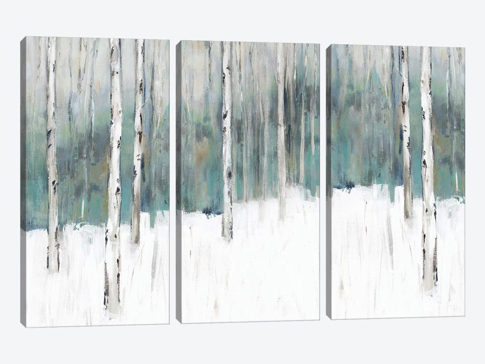 Winter's Trail I  by Isabelle Z 3-piece Canvas Art Print