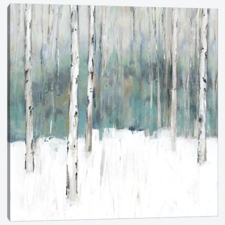 Winter's Trail II  Canvas Print #ZEE220} by Isabelle Z Canvas Artwork