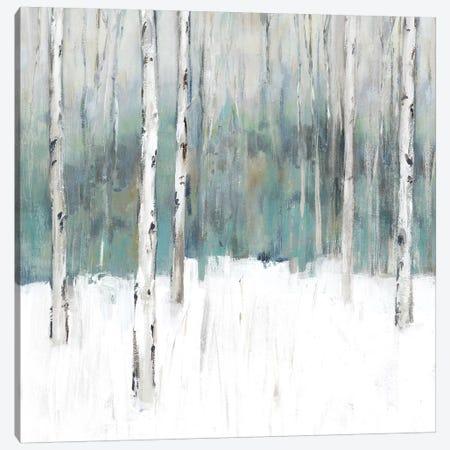 Winter's Trail II  Canvas Print #ZEE220} by Isabelle Z Canvas Artwork