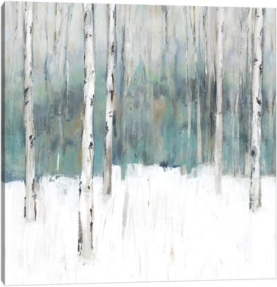 Winter's Trail II  Canvas Art Print