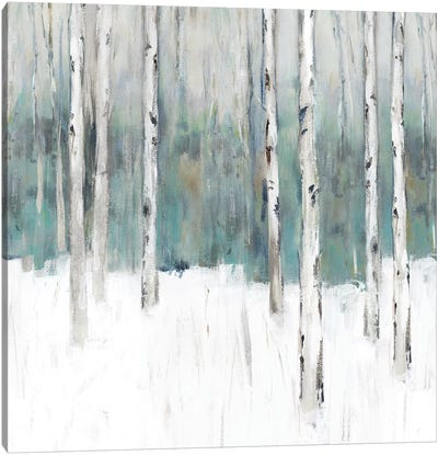 Winter's Trail III  Canvas Art Print