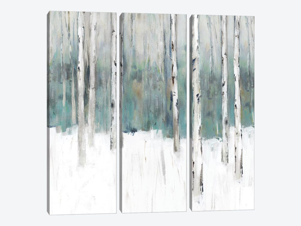 Winter's Trail III  by Isabelle Z 3-piece Canvas Artwork