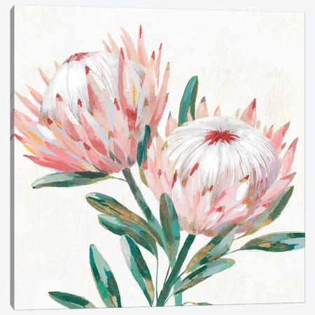 King Protea I Canvas Print #ZEE249} by Isabelle Z Canvas Art