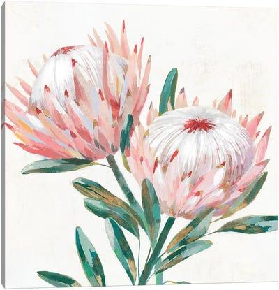 King Protea I Canvas Art Print