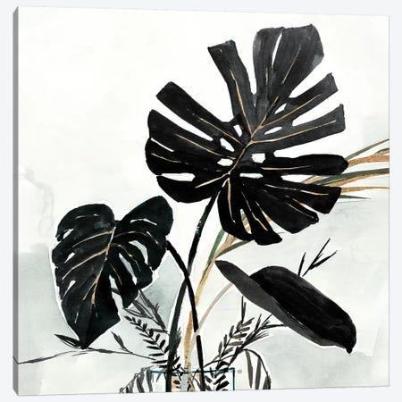 Oasis Palms II Canvas Print #ZEE257} by Isabelle Z Canvas Art