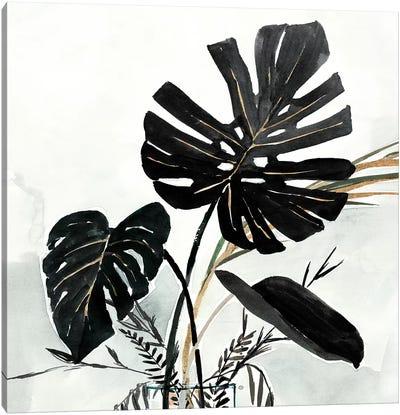 Oasis Palms II Canvas Art Print