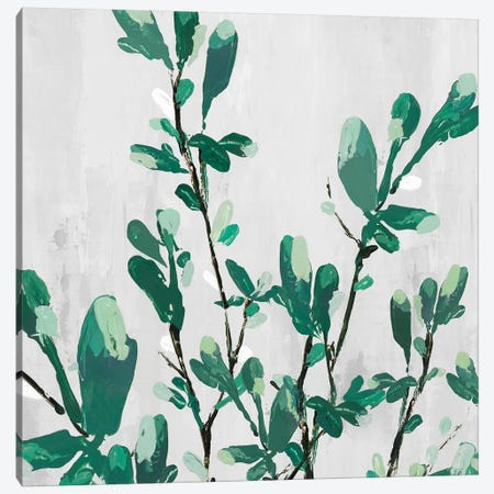 The Branch I Canvas Print #ZEE26} by Isabelle Z Canvas Wall Art