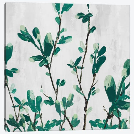 The Branch II Canvas Print #ZEE27} by Isabelle Z Canvas Artwork