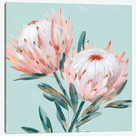 King Protea I Mint Version  Canvas Print #ZEE283} by Isabelle Z Canvas Artwork