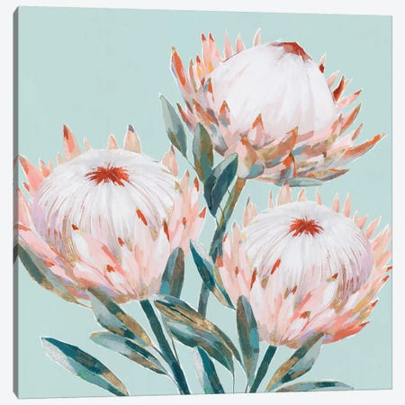 King Protea II Mint Version  Canvas Print #ZEE284} by Isabelle Z Art Print