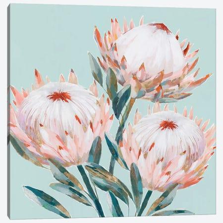 King Protea II Mint Version  Canvas Print #ZEE284} by Isabelle Z Art Print