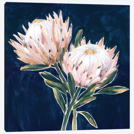 King Proteas  Canvas Print #ZEE285} by Isabelle Z Canvas Art Print